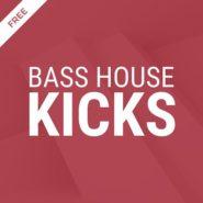 Future Bass and Bass House Kicks