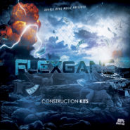 Flex Gang – Construction Kits