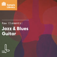 Raw Elements: Jazz & Blues Guitar - Bantana Audio | About the collection…