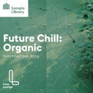 Future Chill Organic