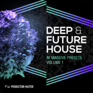 Deep & Future House vol. 1 – NI MASSIVE presets