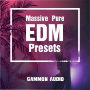 Massive Pure EDM Presets