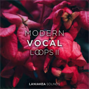 Modern Vocal Loops Volume 2