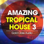 Amazing Tropical House Vol. 3