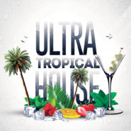Ultra Tropical House Bundle: Synths