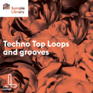 Top Loops and Groovess