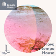 Flow: Downtempo House