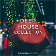 Best of 2017: Deep House Collection