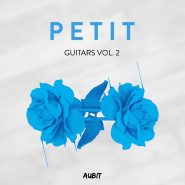 Petit Guitars Vol. 2