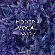 Modern Vocal Loops 4