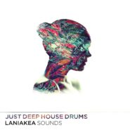 Just Deep House Drums