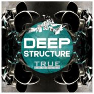 TS – Deep Structure