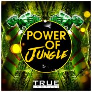 Power of Jungle