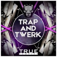 Trap and Twerk