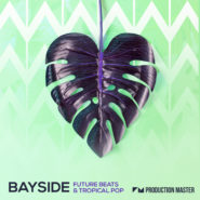 "Bayside - Future Beats & Tropical Pop - Bantana Audio | """"Bayside - Future Beats & Tropical Pop"" greets you to the sound of Ibiza sunsets and late night beach parties. Inspired by the likes of Kygo, Calvin Harris, Zedd, Illenium, Alan Walker, The Chainsmokers and more, this sunshine collection blends feel good vibes with powerful house and future bass beats, creating an ideal mixture for sun soaked festivals. 