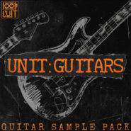 Unit: Guitars